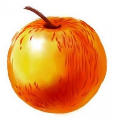 Что можно рассказать о яблоках Солнцедар