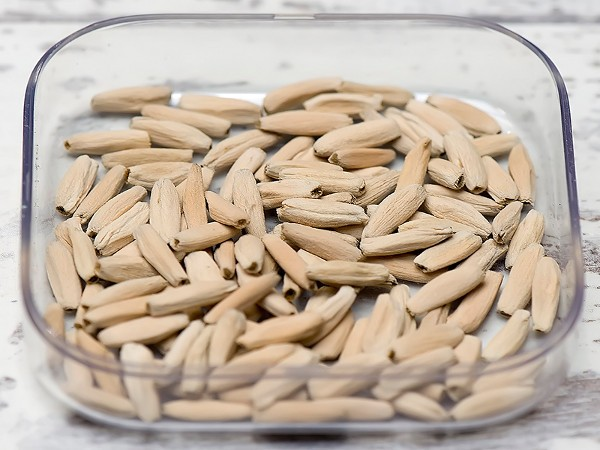 Подготовка к посадке семян Адениума