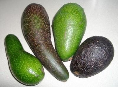 Разные виды авокадо