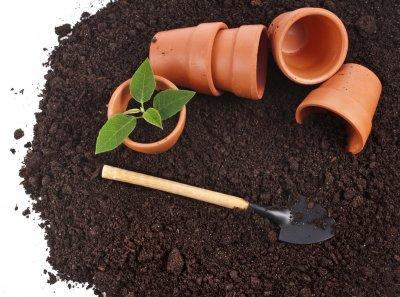 Грунт, почва