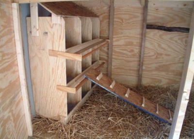 Этапы строительства птичника для кур и важные нюансы их содержания || Содержание кур в птичниках