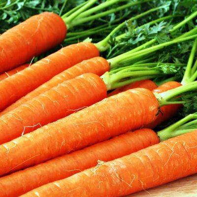 Как сохранить морковь на зиму в домашних условиях в подполе: в чем и как лучше?