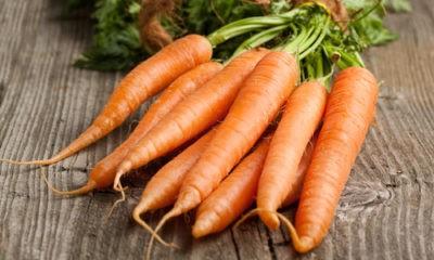 Как можно сохранить морковь на зиму